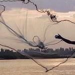 EU to ban fish imports from Cambodia