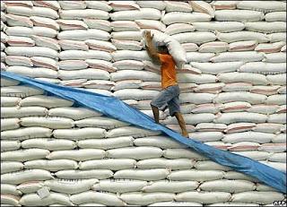 Rice Stockpile