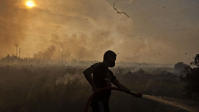 Indonesia to sue Malaysian palm oil firm over smog