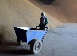 Thai rice fiasco: More problems on the horizon