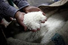 Thai rice scheme a heavy burden
