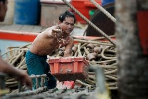 thai_forced_labour