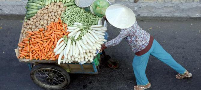 Vietnam's trade surplus with EU at $13.5 billion