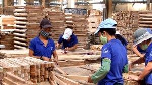 wood exports_vietnam