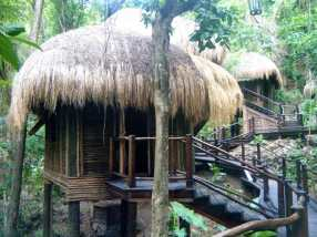 Rainforest Spa
