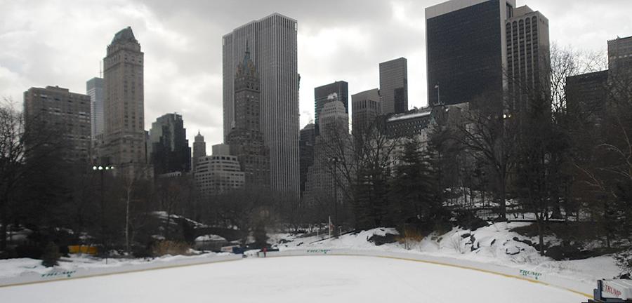 Frío en Central Park