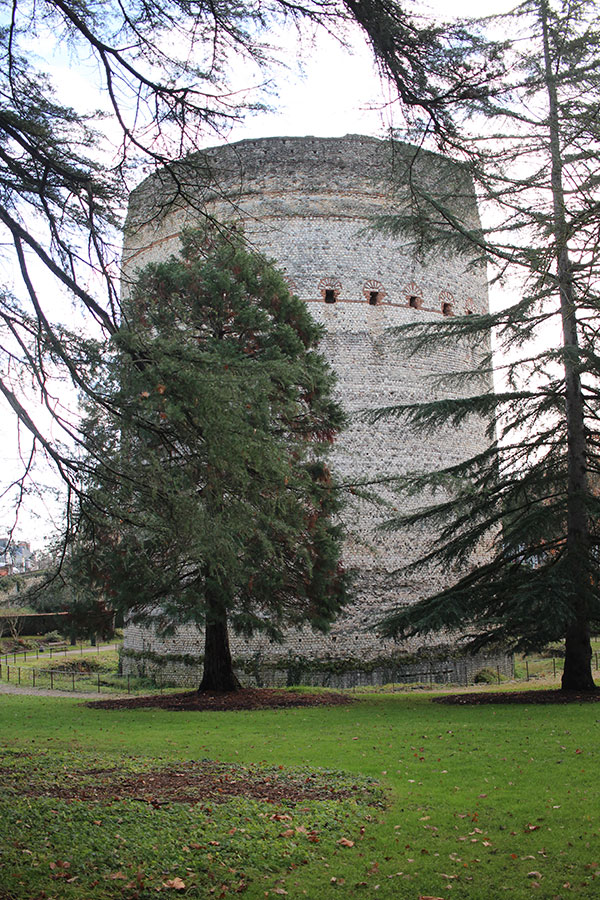 Torre Vesunna