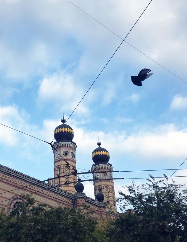 Sinagoga, qué ver en Budapest
