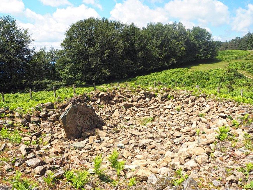 Irukurutzeta dolmen