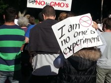 I am No Ones Experiment - @AussieActivist
