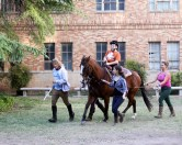 Horse Boy World