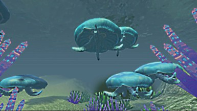newjellyfishes