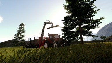 Forestry 2017 - The Simulation (Multiplatform) - 03