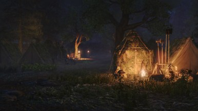 forest-campsite_n
