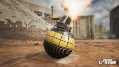 Decoy_Grenade_1