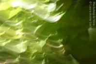 ASmith_07b_2012-12