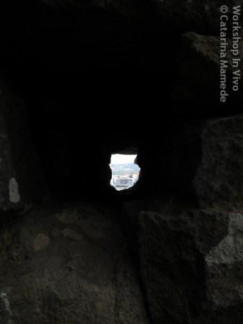CatMam_07_2012-5