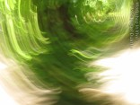 JDuarte_07_2012-8