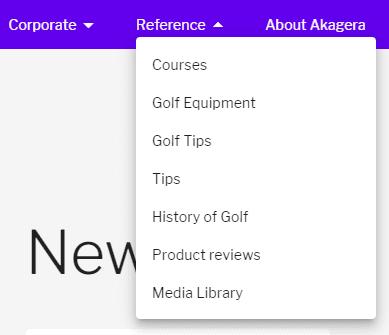 primary navigation menu with dropdown