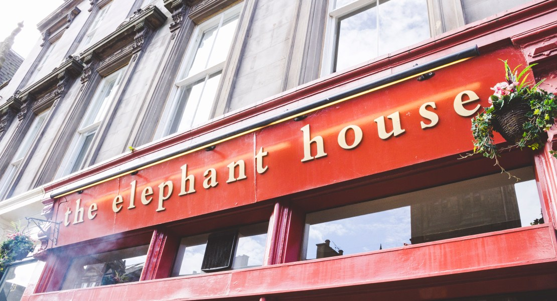 edimburgo the elephant house