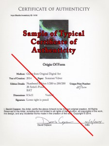 Sample COA - A unique Certificate of Authenticity comes with each print in the limited edition.