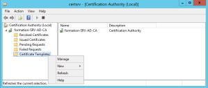 Certificate authority console