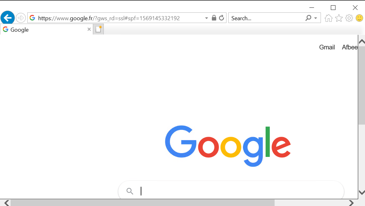 Access to the google website