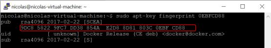 Microsoft tunnel -Docker's official GPG key verify repository
