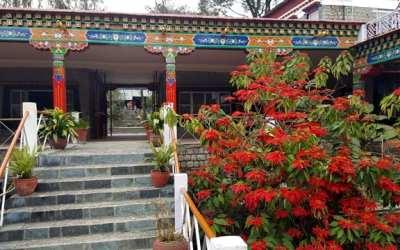 Atradimai ir patyrimai Dharamsaloje 2017 | Norbulinkos Institutas