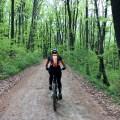 mountain bike padure