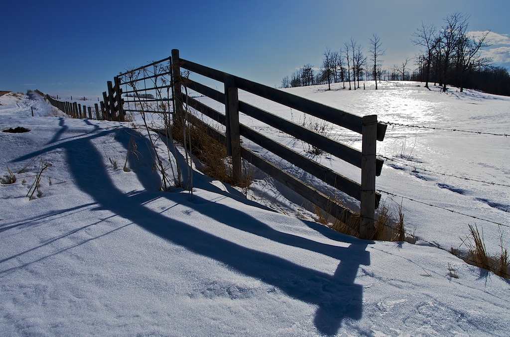Snow Fence and Shadows