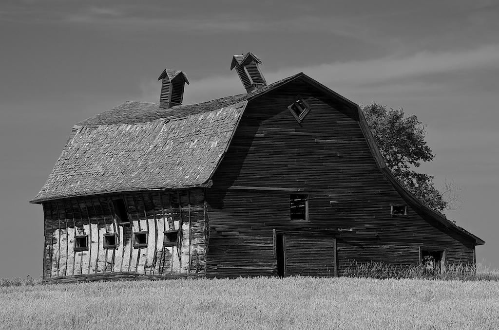 Black and White Barn Photos