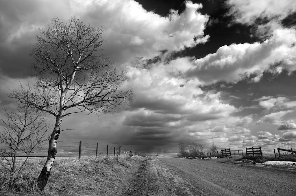 Alberta Storm Chaser