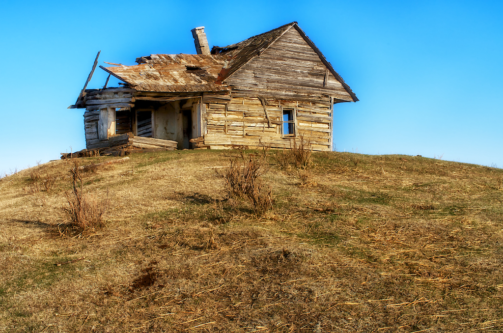 Alberta Homestead