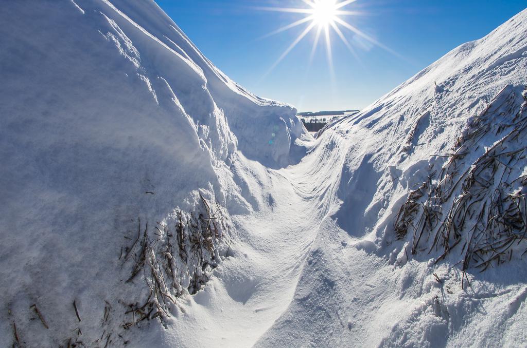 hay-bales-snow-sun