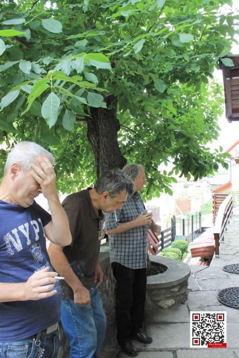 Mihnea Columbeanu, Mircea Liviu Goga, Viorel Parligras