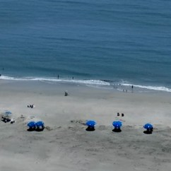 Beach Chair Rental Isle Of Palms Outside Folding Chairs Rentals Iop Bike Co