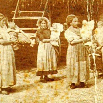 Genealogia Bonomi: Brembilla, Grezzago, Trezzo