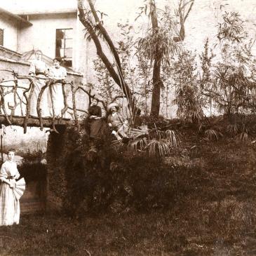 Piante storiche dell'Adda, il secolo verdeggiante