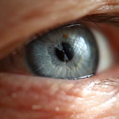 Retinosis pigmentaria. Enfermedades y tratamientos para los problemas oculares por el Instituto Oftalmológico Recoletas.