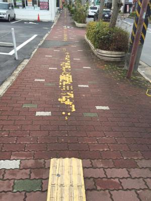 アンチ・バリアフリー都市奈良 やすらぎの道の點字ブロック現況: 天漢日乗