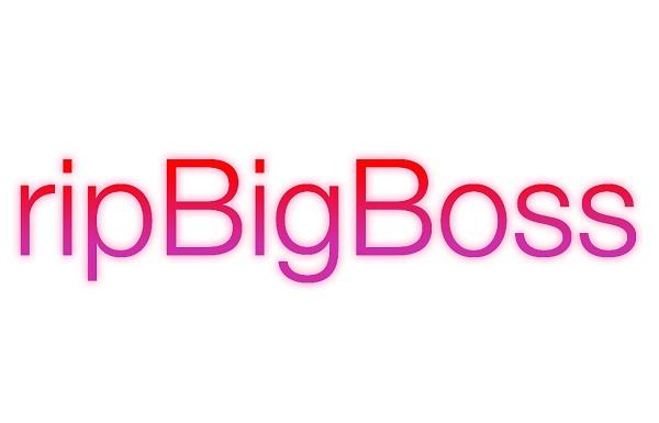 ripBigBoss logo