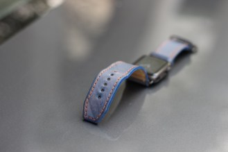 Strapley Strap Review (2)