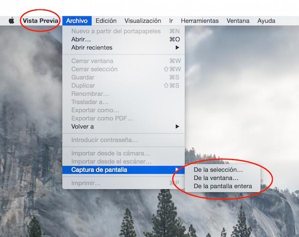 Vista Previa · Captura - Preview · Screenshots