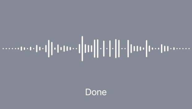 Dictado voz