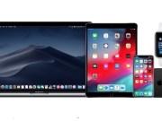 iOS 12.4, macOS 10.14.6, tvOS 12.4 y watchOS 5.3