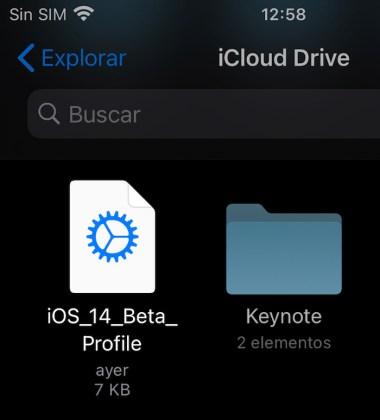 Descarga del perfil iOS 14 y iPadOS 14