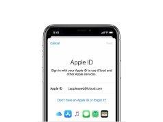 Un hombre demanda a Apple por eliminar su Apple ID