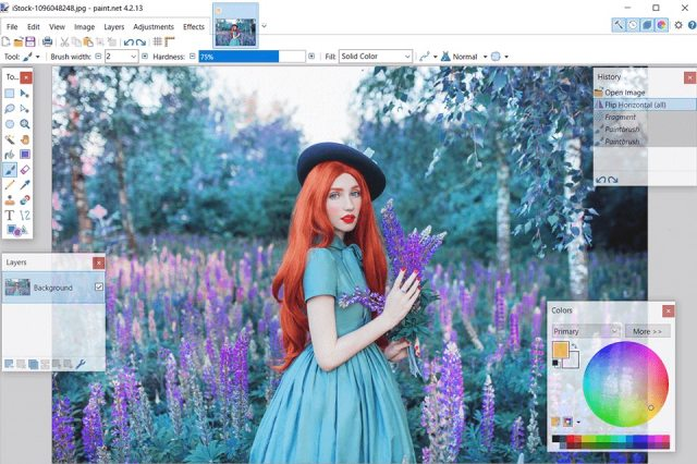 paint.net-photoshop-alternative