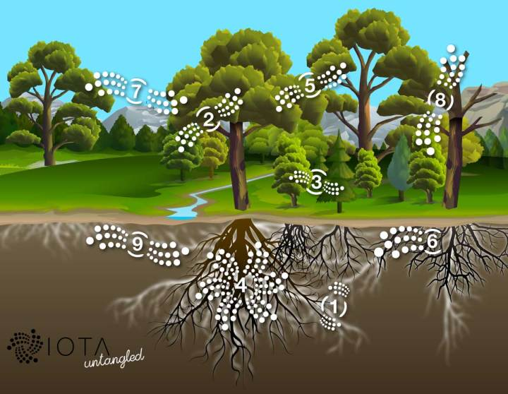 Forest ecosystem biomimicry inspiration for machine ecosystems